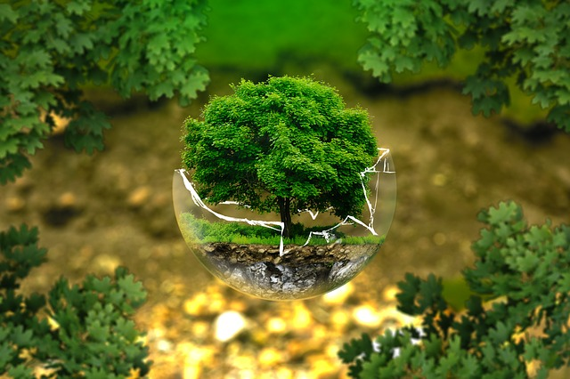 Greenwashing : vrai et faux verts