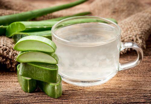 Boire l'aloe vera avant ou après les repas : comment le faire soi-même ?
