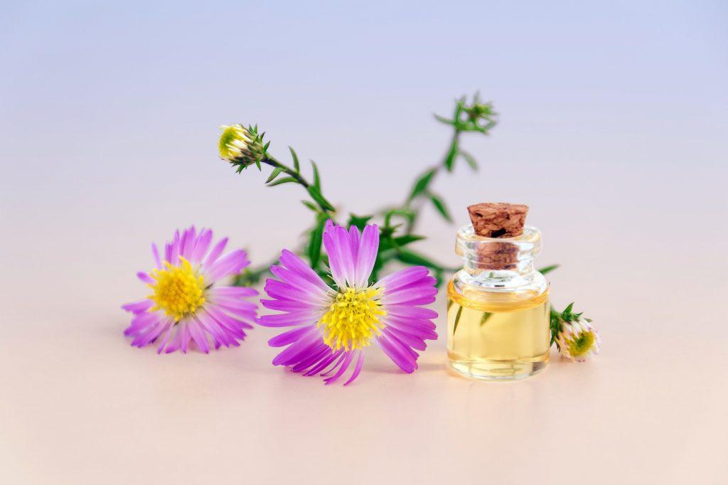 choisir les produits cosmétiques bio - pranaloé - eshop cosmétiques bio et naturels fabriqués en France