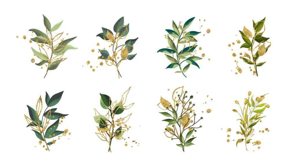 douces angevines les simples du jardin