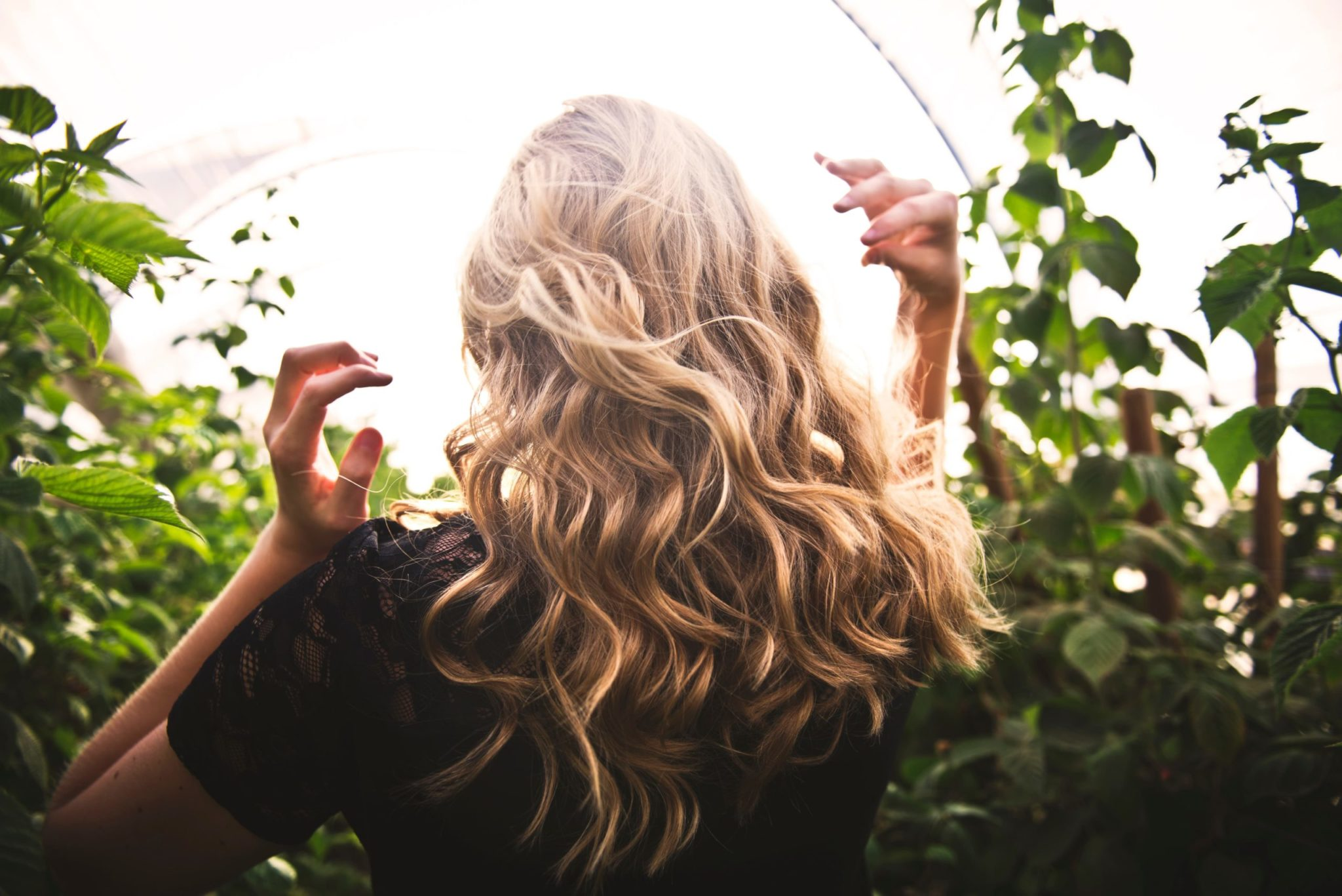 Cheveux Secs : Que Faire ? Guide Ultime du Soin au Naturel