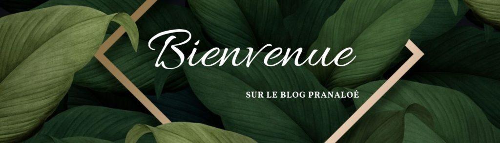 Bienvenue Blog Beauté bio Pranaloé - Pranaloé boutique de cosmétiques bio en ligne et blog beauté bio