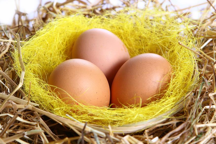 jaune d'oeuf recette masque cheveux secs maison - pranaloé blog cosmétique naturelle et bio